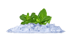 menthe-glace.jpg